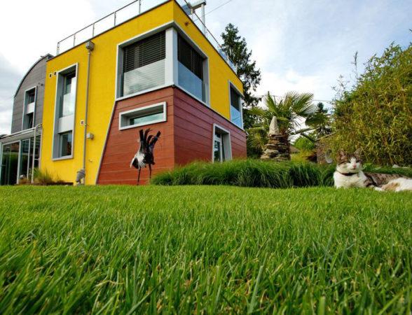 bollinger-architektur-einfamilienhaus-4